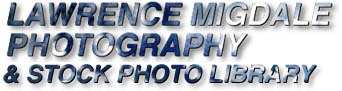 Lawrence Migdale Photography Stock Photo Library